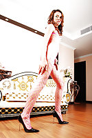 Ladyboy in sexy bodystocking