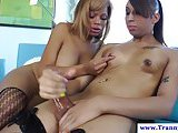 TS tranny plays with trans big dick