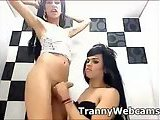 Two hot ladyboys fuck on cam