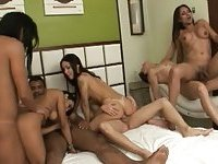 Crazy orgy with many trannys after party