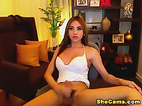 Hot Asian Shemale Jerking on Cam