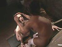 Swarthy TS doll dominates a white guy