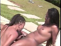 Shemale and tranny have sex poolside