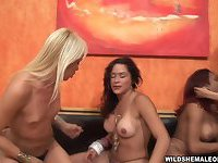 Shemales twister sex orgy