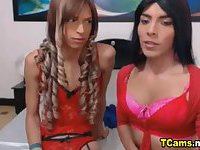 Hot Two Tranny Rubbing Cocks Together