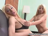 Blonde shemales pet each other