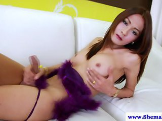 TS tranny Toon tugging her dick and she cant get enough
